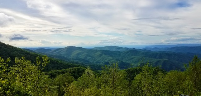 View from Roan Mountain