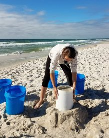 Sandcastle U, form